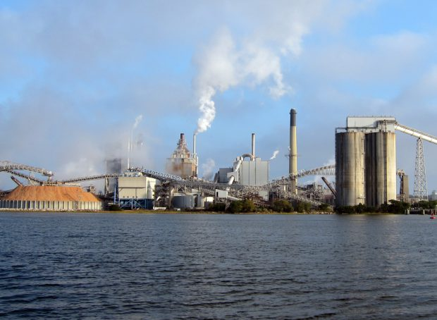 Pulp and Paper Mill Plant
